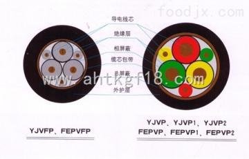 ZR-BPYJVP1-2变频电缆1.8/3KV