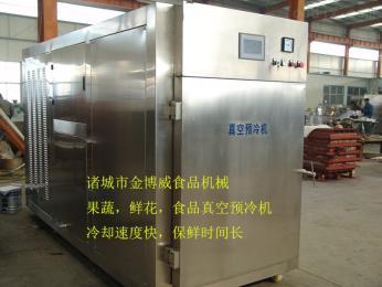 果蔬真空预冷机设备