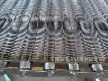 HFLT-W2326不锈钢导轮输送网链