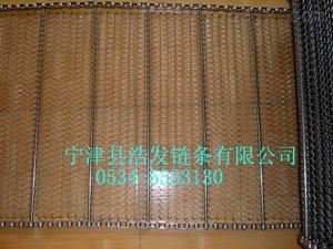 清洗机网带生产厂家
