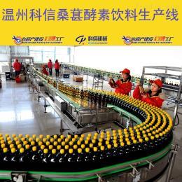 温州科信全套桑葚酵素制作设备厂家 酵素发酵设备