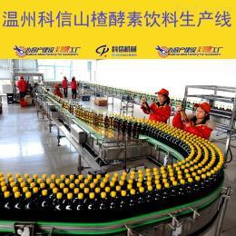 kx-2000全套果汁飲料生產設備價格 新型果汁飲料加工流水線設備廠家溫州科信