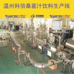 温州科信小型桑葚果汁饮料生产设备桑葚饮料灌装设备
