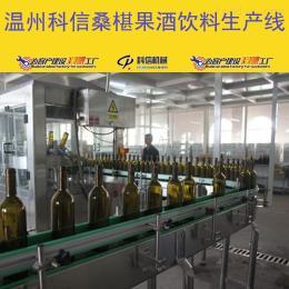 kx-2000小型猕猴桃果酒饮料加工设备厂家温州科信