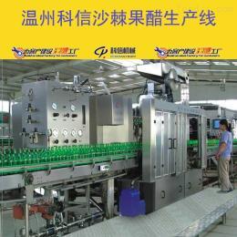 kx-2000成套沙棘果醋饮料生产线设备价格|小型沙棘果醋发酵罐设备厂家