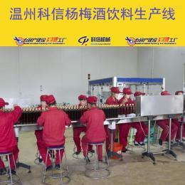 kx-2000成套杨梅酒饮料生产线设备厂家温州科信