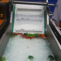 HY-5000马齿菜清洗机生产厂家