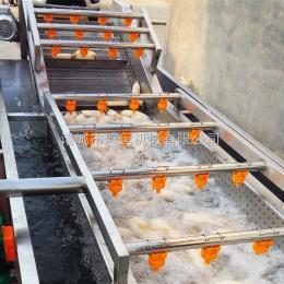 HY-5000蕨菜气泡清洗机