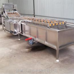 HY-4000豆角清洗机/蔬菜清洗机