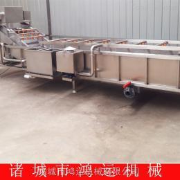 HY-4000鴻運直銷蔬菜清洗機/果蔬清洗設備