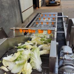 果干气泡清洗机 果菜类高压清洗机