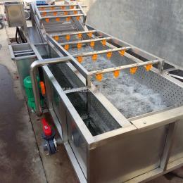 气泡蔬菜清洗机生产厂家
