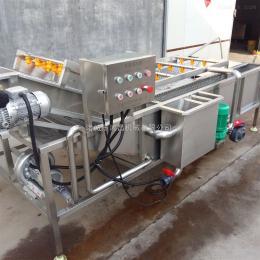 肉质根类蔬菜清洗机