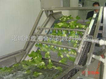 佳惠叶类蔬菜清洗机