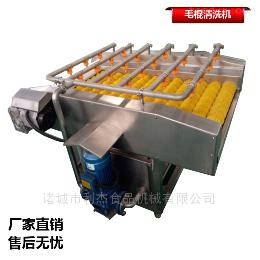 果蔬全自动高压喷淋式平行毛棍清洗设备