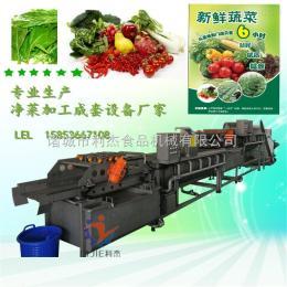 LJQX-4500生鲜配送企业净菜加工成套设备 厂家直销 专业定制 大型企业净菜加工流水线