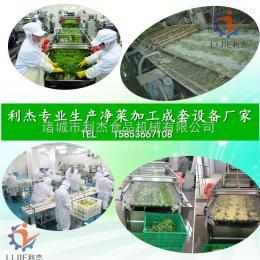 LJQX-4500厂家 直销土豆丝清洗加工流水线 芹菜切段清洗设备 冷冻蔬菜加工设备