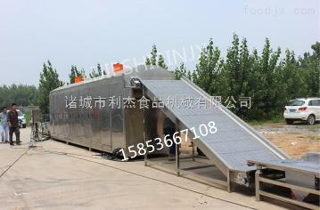LJHJ-10000专业制造大枣烘干机 干燥设备 脱水机 价格优惠 节能均匀 智能先进 操作简单