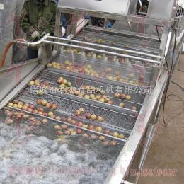 供应 苹果清洗机  诸城利杰机械