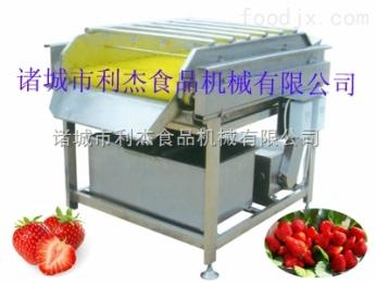 利杰机械加工草莓脱毛机 草莓清洗机设备