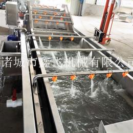 豆芽菜清洗机厂家