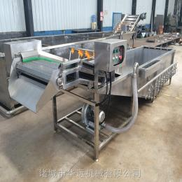 QX-4000蔬菜清洗风干流水线 嫩菠菜风干机