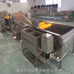 QX-4000菠菜清洗风干机制造 清洗风干流水线