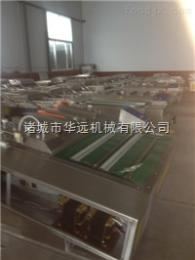 DZ-1000湖南大米包装机华远1000型食品真空包装机