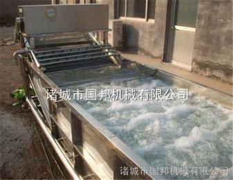 GB-4000供应食用菌清洗机 果蔬清洗机设备 节能环保