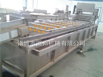 GB-4000厂家直销国邦牌水果蔬菜清洗机,叶类蔬菜清洗流水线