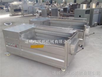 GB-1000供应红薯清洗机 红薯切片切条机 紫薯清洗机 毛辊专用清洗设备