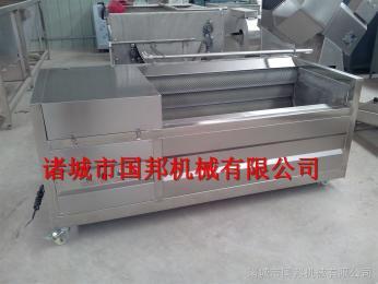 GB-1000国邦机械红薯清洗脱皮机 河北红薯毛刷清洗机 1100型毛刷清洗设备