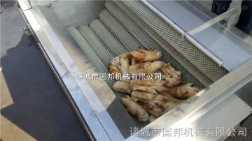 GB-1500GB-1500型豬頭清洗機器、生產洗豬蹄設備、羊蹄清洗設備報價
