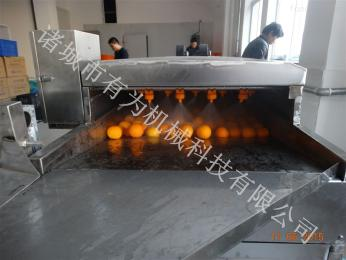 YW-400全自動橙子清洗機廠家