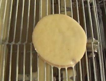 LJJ-600瀑布式汉堡肉饼上浆机