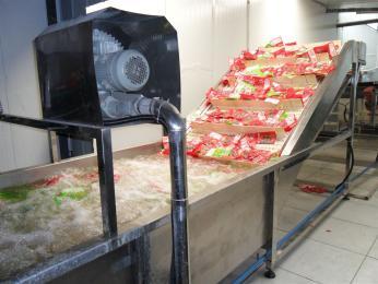 HSXD-2000食品洗袋机