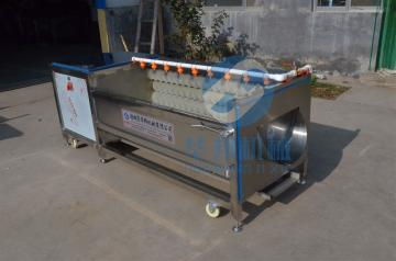 HB-1500型云南雪莲果清洗机 土豆去皮机 毛辊刷洗