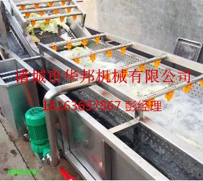 华邦鼓泡式洗菜机 全不锈钢蔬菜清洗机