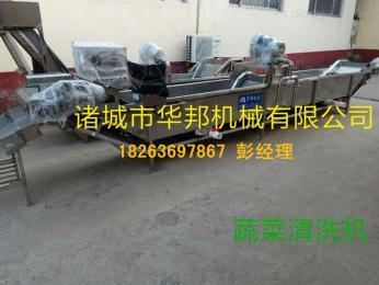 网带输送蔬菜清洗机 304不锈钢蔬菜清洗机