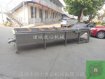 FX-600黄花菜洗菜机