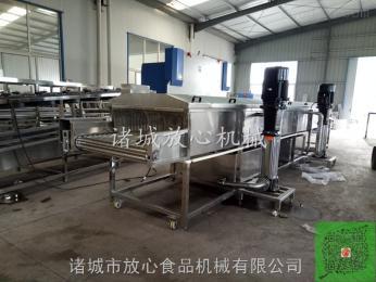 FX-1000速冻玉米加工设备 果蔬加工线