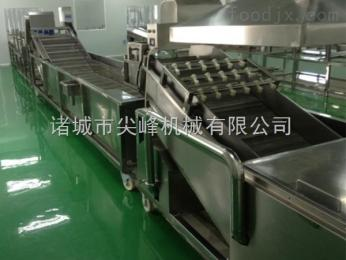 蔬菜漂烫冷却流水线设备