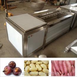 土豆清洗機 毛刷清洗去皮機耀邦機械廠家直銷