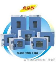 DHG-鼓风干燥箱系列-特价