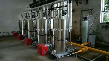 LSS0.2-0.7-Y/Q化工厂用0.2吨小型立式燃油蒸汽锅炉发生器