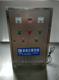 正康廠家直銷不銹鋼臭氧發生器