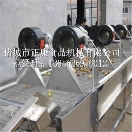 ZK-3500生产厂家供用蔬菜气泡清洗机、多功能气泡清洗机