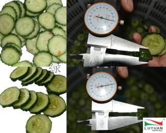全自动蔬菜切割机厂家