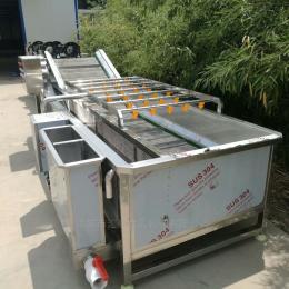 QX-4000型菠菜清洗机  超声波清洗流水线