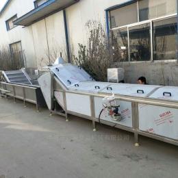 SJ-3生产饮品杀菌机,自动控温灭菌机 双层网带